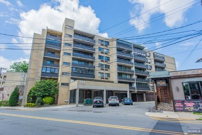Cliffside Park Condo/Townhouse For Sale: 555 Gorge Road #6a