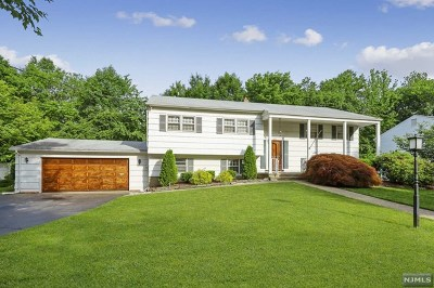 Paramus NJ Single Family Home For Sale: $679,000