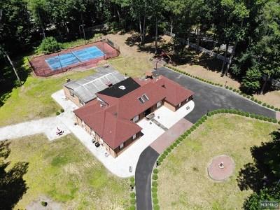 Saddle River Single Family Home For Sale: 91 Chestnut Ridge Road