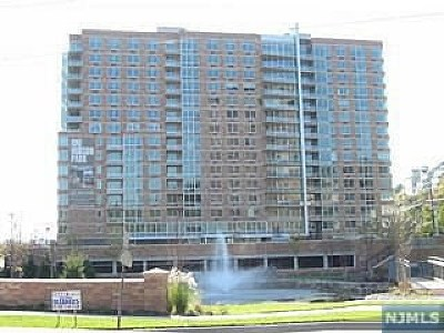 Edgewater Condo/Townhouse For Sale: 1119 Hudson Park #1119
