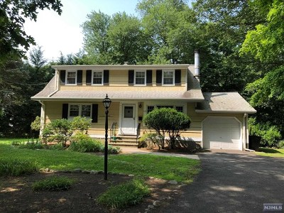 Ridgewood Single Family Home For Sale: 528 Franklin Turnpike