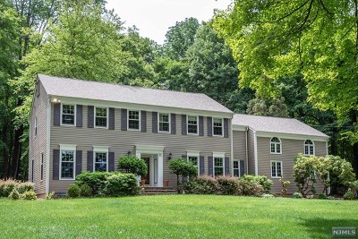 Mendham Township Single Family Home For Sale: 41 Calais Road