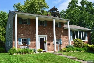 Park Ridge Single Family Home For Sale: 235 Capri Terrace