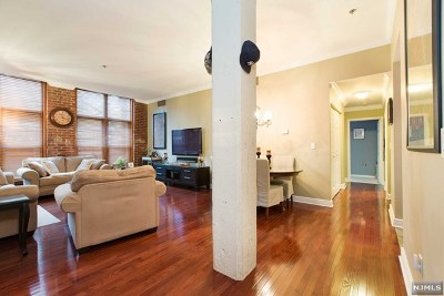 Little Falls Condo/Townhouse For Sale: 262 Main Street #103