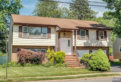 Fair Lawn Single Family Home For Sale: 12-21 George Street