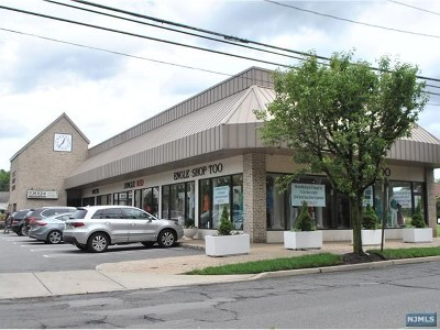Cresskill Commercial For Sale: 156 Piermont Road