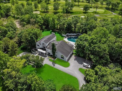 Alpine NJ Single Family Home For Sale: $5,500,000