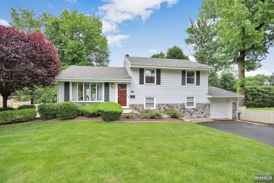 Cresskill Single Family Home For Sale: 156 10th Street
