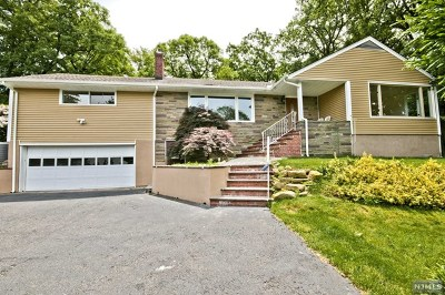 Tenafly Single Family Home For Sale: 234 East Clinton Avenue