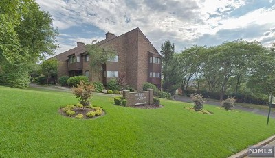 Bergen County Condo/Townhouse For Sale: 227 Indian Hollow Court