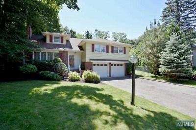 Ho-Ho-Kus Single Family Home For Sale: 9 Ferris Court