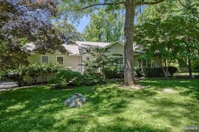 Morris County Single Family Home For Sale: 99 Kingsland Road