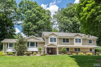 Woodcliff Lake Single Family Home For Sale: 18 Sylvia Court