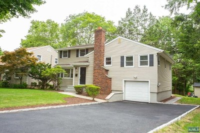 Cresskill Single Family Home For Sale: 206 East Madison Avenue