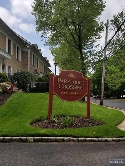 Park Ridge Condo/Townhouse For Sale: 45a South Maple Avenue