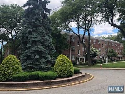 Bergen County Condo/Townhouse For Sale: 1472 West Terrace Circle #5
