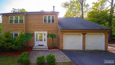 West Milford Single Family Home For Sale: 113 Ridge Road