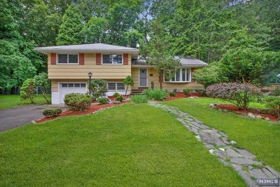 Closter Single Family Home For Sale: 138 Maple Avenue