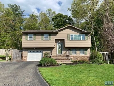 Passaic County Single Family Home For Sale: 13 Mark Terrace