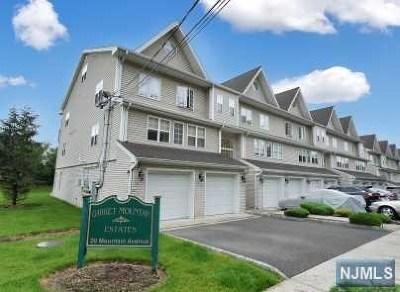 Paterson Condo/Townhouse For Sale: 20 Mountain Avenue #4