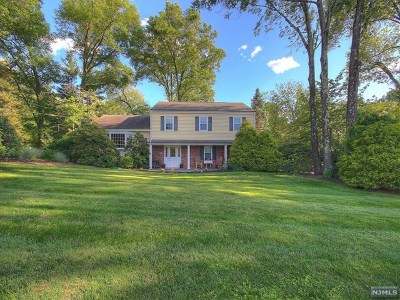 Upper Saddle River Single Family Home For Sale: 40 Partridge Hill