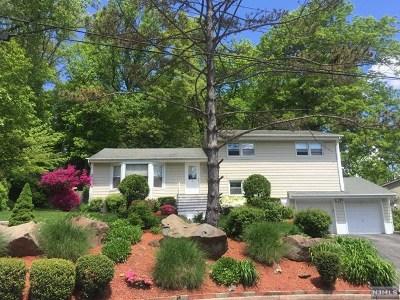 Cresskill Single Family Home For Sale: 29 Cedar Street
