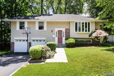 Park Ridge Single Family Home For Sale: 236 Capri Terrace