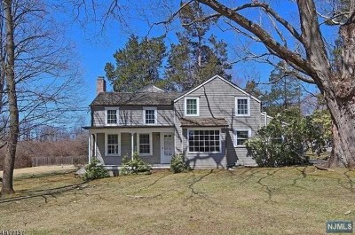 Morris County Single Family Home For Sale: 229 Blue Mill Road