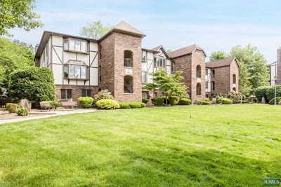 Park Ridge Condo/Townhouse For Sale: 126 Hawthorne Avenue