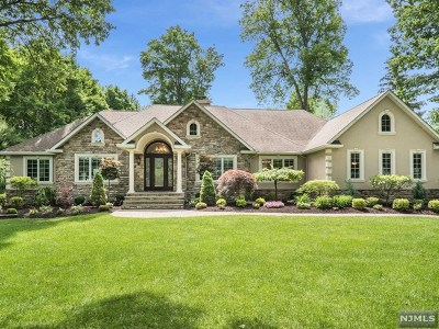 Passaic County Single Family Home For Sale: 15 Colona Road