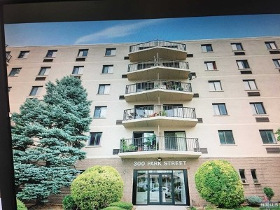 Hackensack Condo/Townhouse For Sale: 300 Park Street #5h