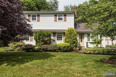 Cresskill Single Family Home For Sale: 27 Delmar Avenue