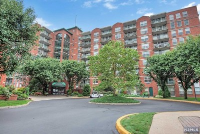Little Falls Condo/Townhouse For Sale: 300 Main Street #415