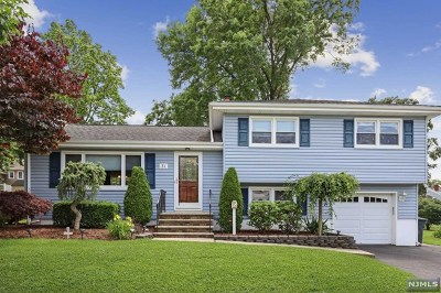 Emerson NJ Single Family Home For Sale: $499,900