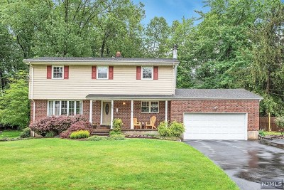 Essex County Single Family Home For Sale: 12 Westview Road