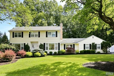 Old Tappan NJ Single Family Home For Sale: $929,000
