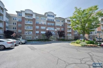 Wanaque Condo/Townhouse For Sale: 7206 Warrens Way #206