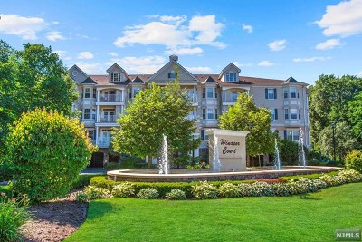Rochelle Park Condo/Townhouse For Sale: 175 Rochelle Avenue #101