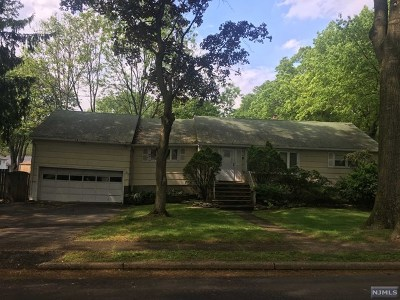 Paramus Single Family Home For Sale: 11 Hall Road
