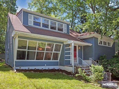 Rockaway Township Single Family Home For Sale: 173 White Meadow Road