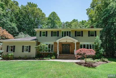 Saddle River Single Family Home For Sale: 34 North Church Road
