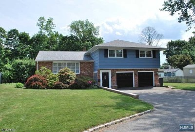 Morris County Single Family Home For Sale: 7 Ramapo Road