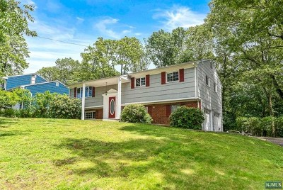 Morris County Single Family Home For Sale: 15 West Richard Drive