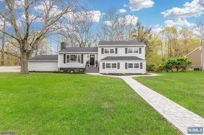 Little Falls Single Family Home For Sale: 3 Reiners Road