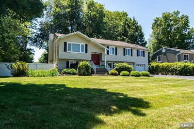 Morris County Single Family Home For Sale: 129 Sunset Road