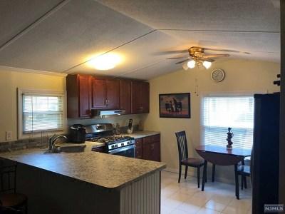 Wayne Single Family Home For Sale: 3 4th Street