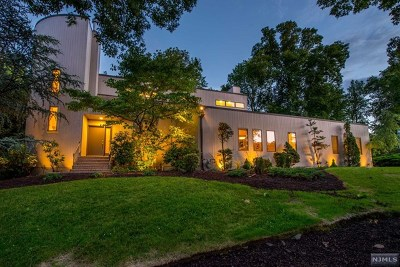 Morris County Single Family Home For Sale: 15 High Mountain Trail