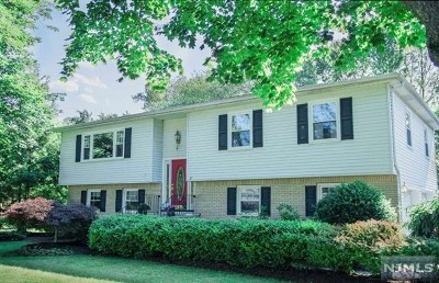 Morris County Single Family Home For Sale: 17 Arundel Road