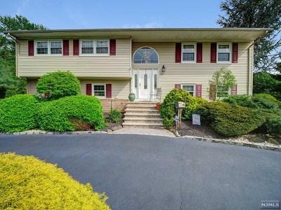 Morris County Single Family Home For Sale: 357 Ridgedale Avenue