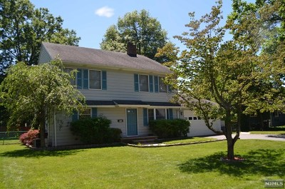 Cresskill Single Family Home For Sale: 238 Phelps Avenue
